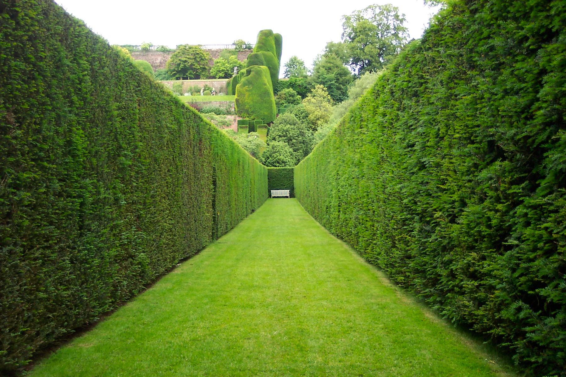 Good Technique is the Path to the Perfect Hedge