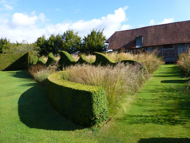 What's the Best Shape for a Thuja Hedge?